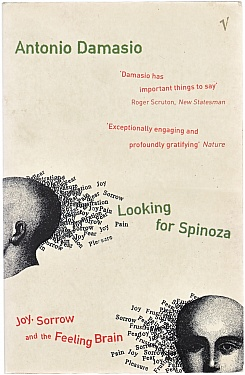 Looking for Spinoza: Joy, Sorrow and the Feeling Brain